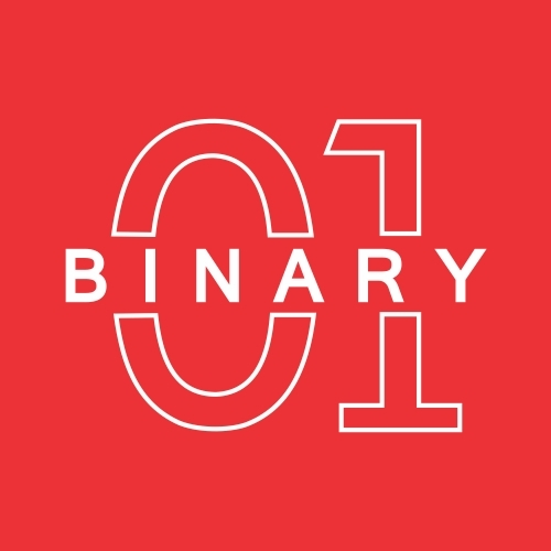 Binary Web Solutions India Pvt. Ltd logo