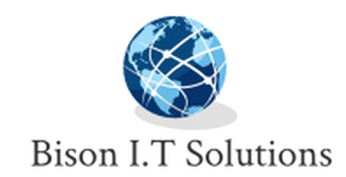 Bison I.T Solutions logo