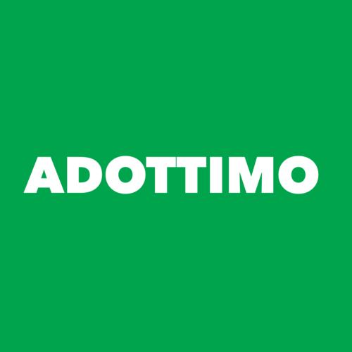 Adottimo ltd. logo